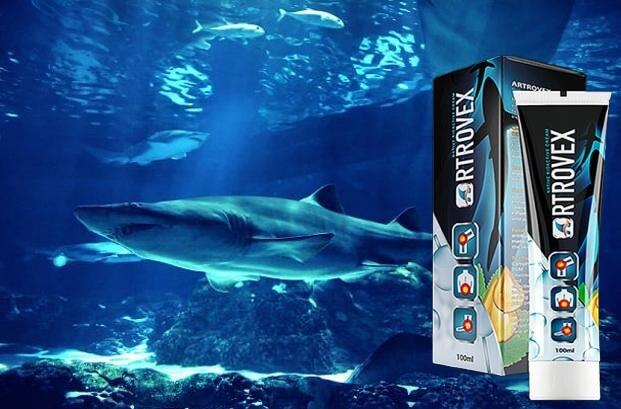 Artrovex, акули