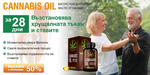 cannabis oil капсули мнения