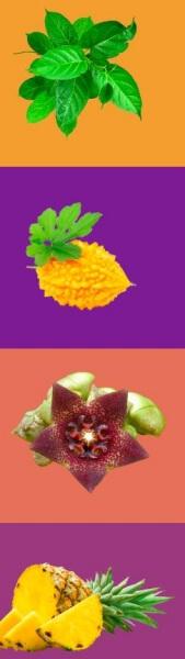ананас, съставки