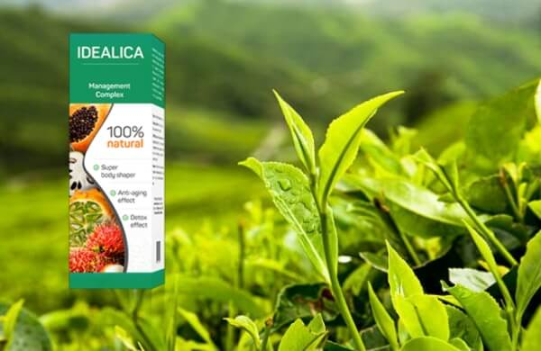 Idealica, зелен чай